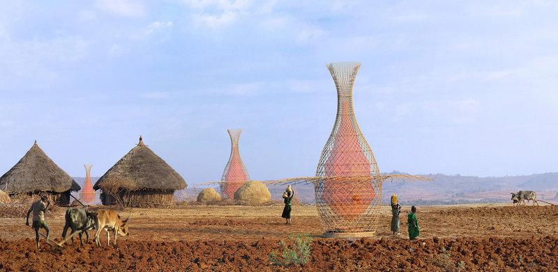 WarkaWater lleva el nombre de un árbol de higo de Etiopía