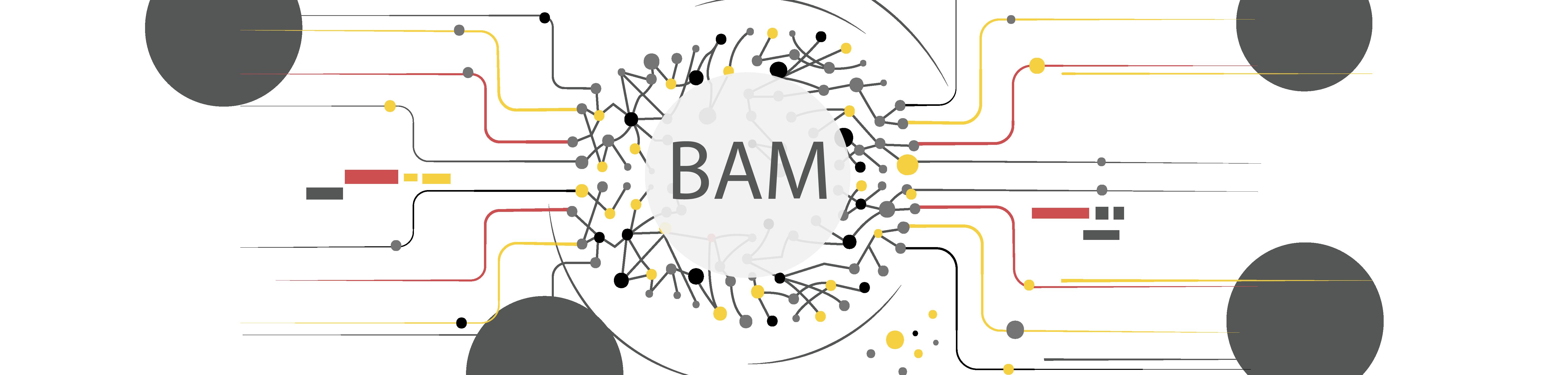 BAM-building-algorithmic-modelling